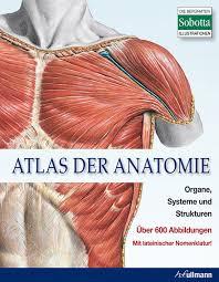 atlas-der-anatomie