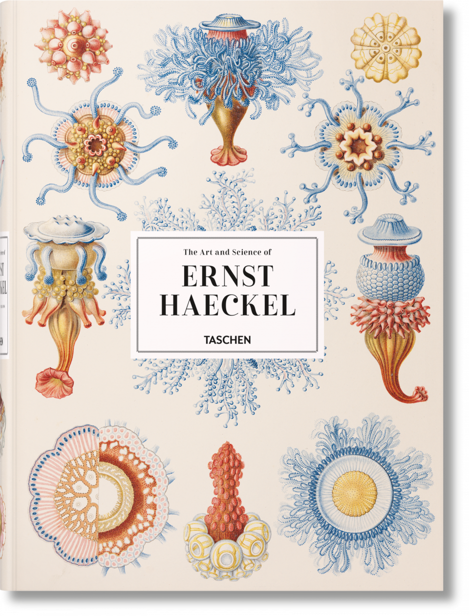 32739db408bce The Art and Science of Ernst Haeckel erschienen bei Taschen